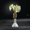 фарфоровые вазы Rosenthal studio-line, юбилейный выпуск, немецкий фарфор,  pg