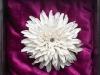 xrizantema3_0.jpg