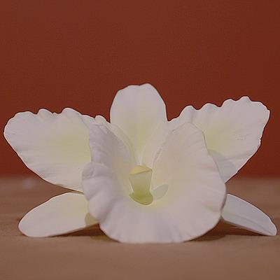 орхидея, костный фарор, ручная работа, CSM