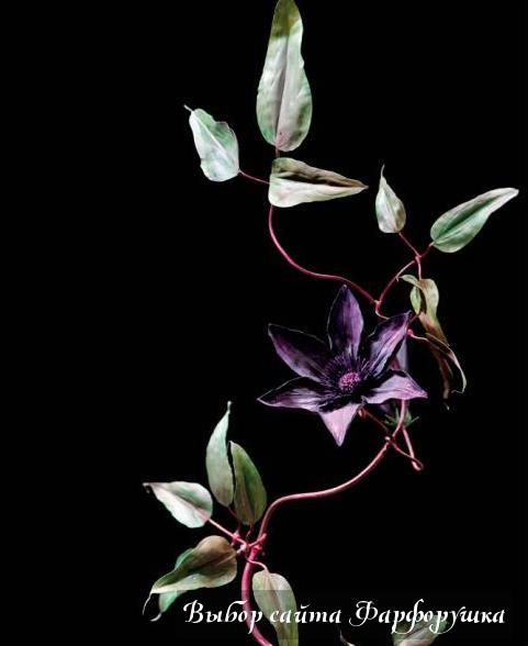 """""""Эдемский сад"""" Meissen, фарфоровые цветочные композиции"""